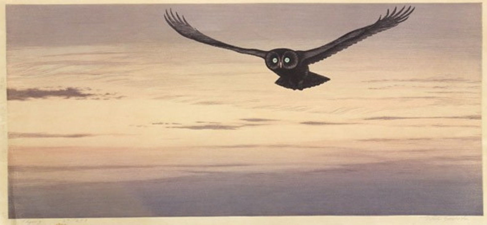"Tōshi Yoshida ""Flying""  main image"